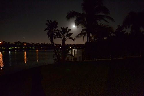 Full Moon 111111